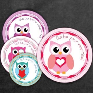 FREE Valentine's Day Owl Label and Treat Bag Topper Printables