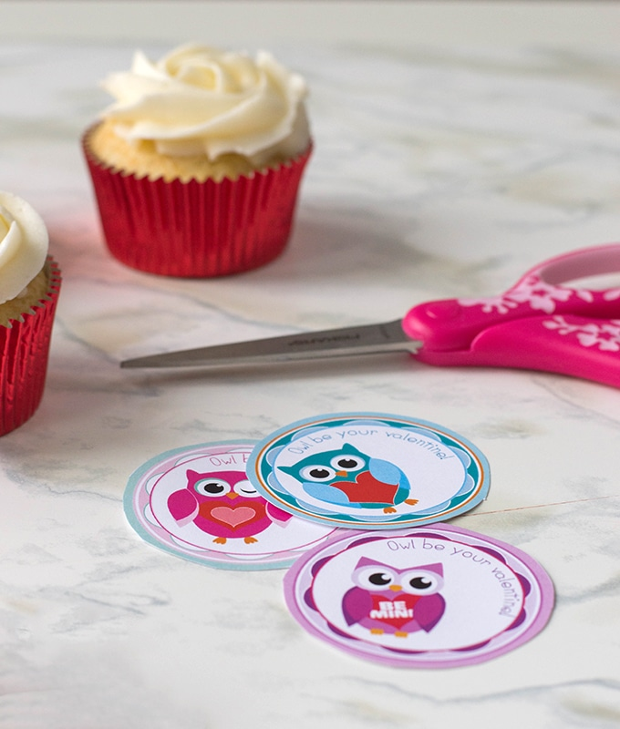 cut out Valentine's Day owl cupcake topper printables, frosted cupcakes, and pink scissors