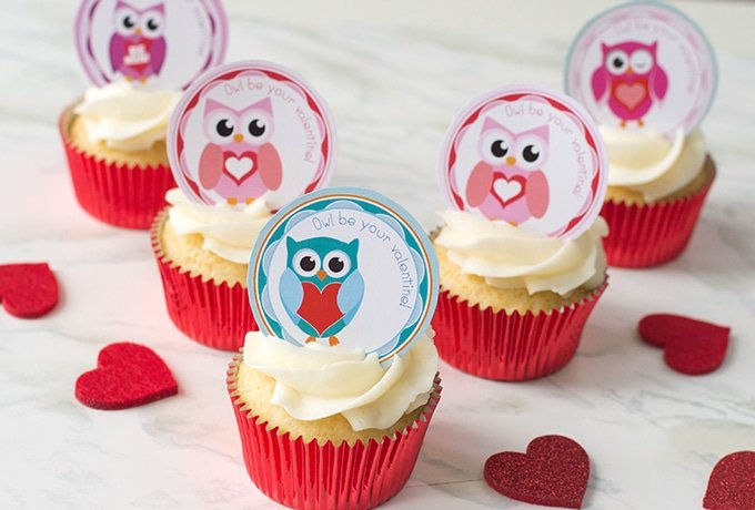graphic relating to Cupcake Printable identified as Printable Valentines Working day Owl Cupcake Toppers Onion Rings