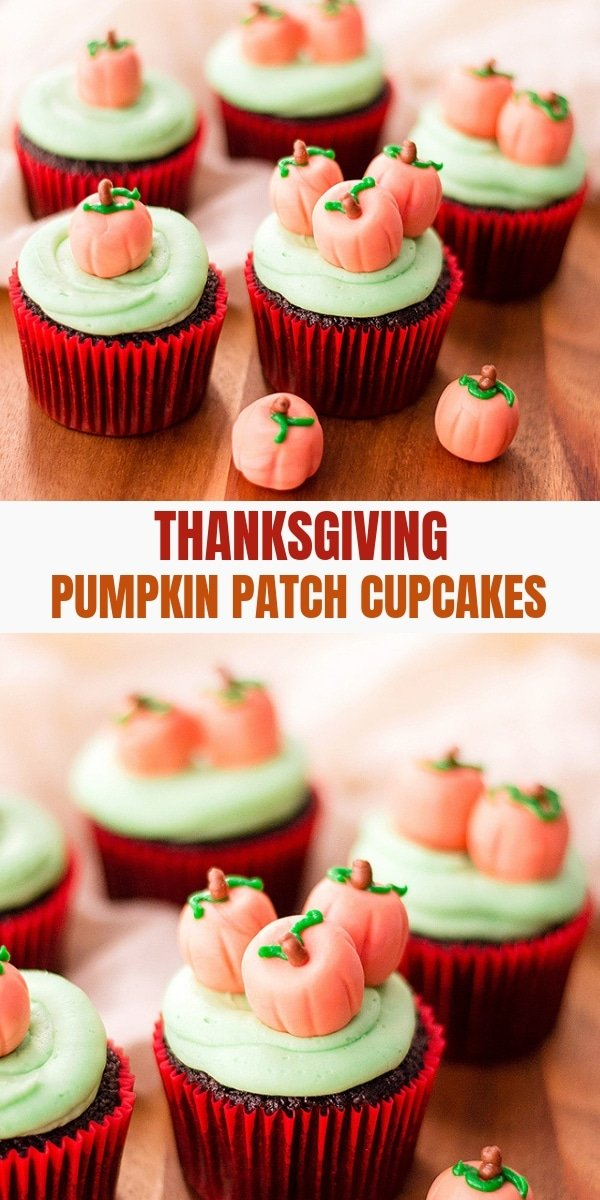 pumpkin patch decorated chocolate cupcakes